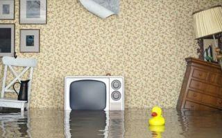 Независимая экспертиза при затоплении (заливе) квартиры в 2020 — стоимость, как сделать