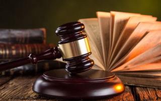 Выселение из квартиры прописанного человека не собственника в 2020 — иск, инвалида, по решению суда