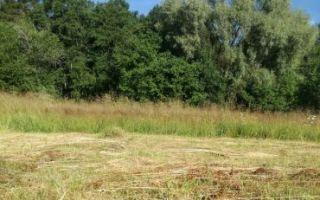 Долевая собственность на землю в 2020 — как разделить, продажа, оформление