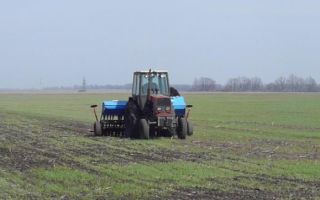 Как взять землю в аренду у государства под сельское хозяйство в 2020 году?