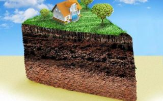 Как оформить землю в собственность под многоквартирным домом (мкд) в 2020 — порядок
