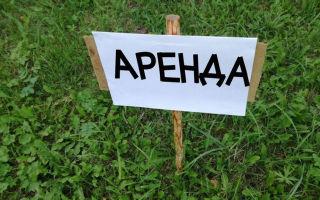 Договор аренды земельного участка между физическими лицами в 2020 — образец