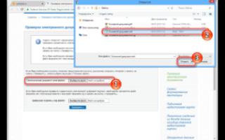 Как открыть xml файл выписки егрн с росреестра в 2020