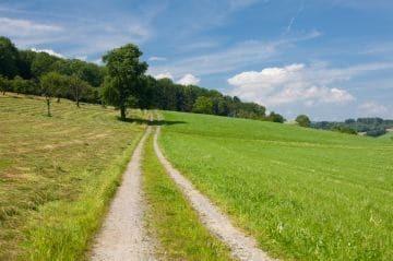 Аренда земли под ИЖС у администрации в 2020 - риски