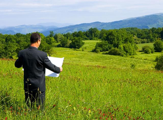 Как заказать и получить выписку из ЕГРН на земельный участок