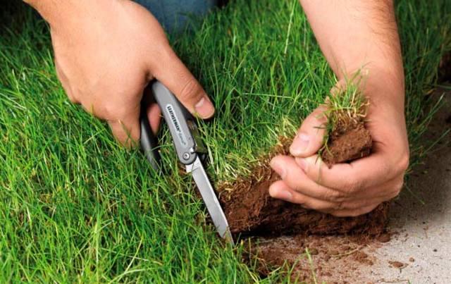 Штраф за незаконное использование (самозахват) земли в 2020 - юридическим лицом