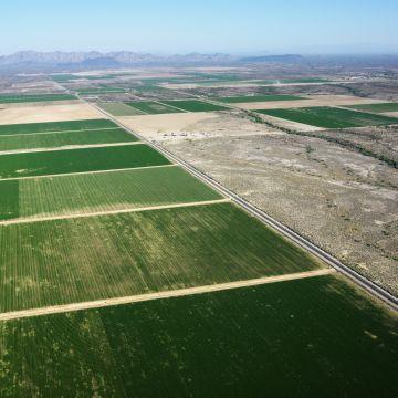 Сдать в аренду земельный участок в 2020 - можно ли, сельхозназначения, без здания, под вышку сотовой связи