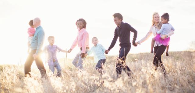 Как распределяется наследство без завещания в 2020 - между родственниками, между детьми
