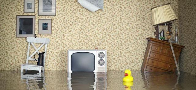 Независимая экспертиза при затоплении (заливе) квартиры в 2020 - стоимость, как сделать