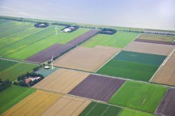 Договор аренды земельного участка сельскохозяйственного назначения в 2020 - образец, срок