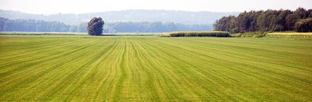 Как перевести земли сельхозназначения под ИЖС в 2020 - можно ли, цена