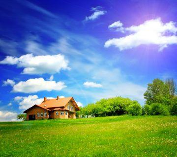 Договор аренды лесного участка в 2020 - образец, регистрация, предварительный, передача прав